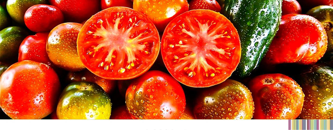 tomatesmercaolid